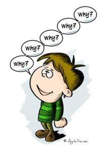 5 whys kid
